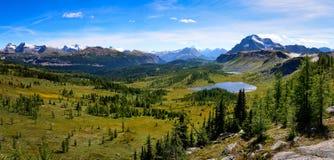 Panoramautsikt av berg i den Banff nationalparken, Alberta, Kanada Royaltyfria Bilder