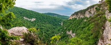 Panoramautsikt av berget med en brant stenig lutning och dalen med den tjocka gröna skogen under royaltyfri bild