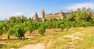 Panoramautsikt av Carcassonne Arkivfoton