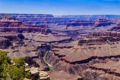 Panoramautsikt av Coloradofloden i den västra Grand Canyon Arkivbild