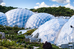 Panoramautsikt av de geodetiska biomekupolerna på Eden Project Royaltyfri Bild