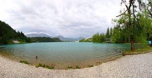 Panoramautsikt av den blödde sjön, Slovenien Arkivbild