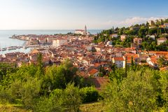 Panoramautsikt av den gamla staden Piran, Slovenien, Europa Bakgrund för begrepp för turism för sommarsemestrar royaltyfri foto