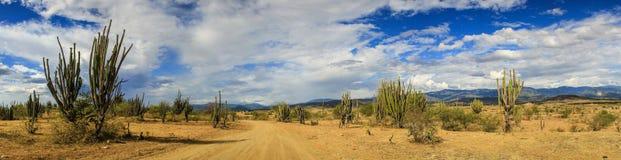 Panoramautsikt av den Tatacoa öknen, Colombia Arkivbild