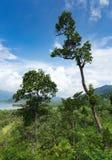 Panoramautsikt av den tropiska ön Arkivfoto