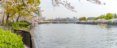 Panoramautsikt av det gula turist- fartyget i floden och bet Royaltyfri Bild