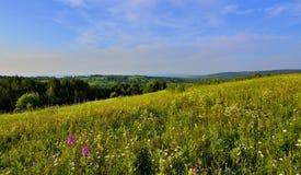 Panoramautsikt av det härliga sommarlandskapet Arkivfoton