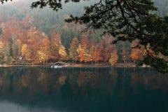 Panoramautsikt av det sceniska idylliska höstlandskapet i Bayern Royaltyfri Fotografi