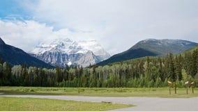 Panoramautsikt av det sceniska Robson berget och pinjeskogen i sommar royaltyfria foton