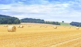 Panoramautsikt av det skördade fältet med höbaler Arkivbilder