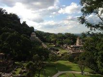 Panoramautsikt av en arkeologisk plats Palenque royaltyfria bilder