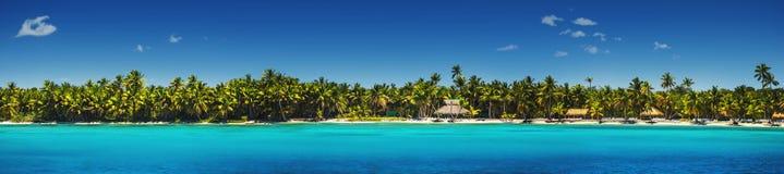 Panoramautsikt av exotiska palmträd på den tropiska stranden Arkivbild