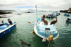 Panoramautsikt av fiskareskeppsdockan Fotografering för Bildbyråer