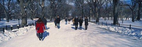 Panoramautsikt av gångare som går på ny insnöad Central Park, Manhattan, New York City, NY på en solig vinterdag Royaltyfria Foton