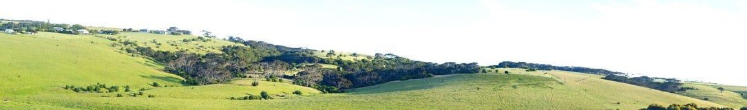Panoramautsikt av gröna kullar Royaltyfri Foto