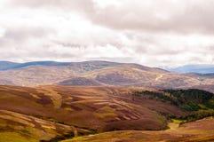 Panoramautsikt av högländerna Royaltyfri Bild