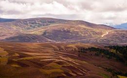 Panoramautsikt av högländerna Royaltyfri Fotografi