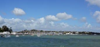 Panoramautsikt av Half Moon Bayen, Waitemata hamn, Auckland Arkivbilder