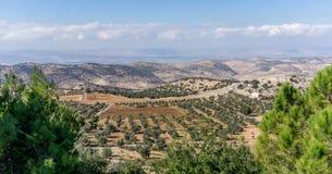 Panoramautsikt av Jordan Valley med sikt av olivgröna dungar Royaltyfria Foton