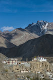 Panoramautsikt av Ladakh Royaltyfria Bilder