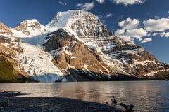 Panoramautsikt av Mt Robson Royaltyfri Fotografi