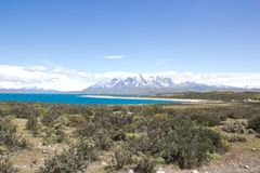 Panoramautsikt av nationalparken i Sydamerika royaltyfri fotografi