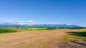 Panoramautsikt av Patchroad med den guld- risfältet och bergskedja fotografering för bildbyråer