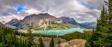 Panoramautsikt av Peyto sjön och steniga berg, Kanada Royaltyfria Bilder