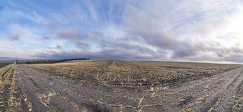 Panoramautsikt av plogade fält i morgondimma Royaltyfria Bilder