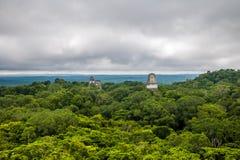 Panoramautsikt av rainforesten och överkant av mayan tempel på den Tikal nationalparken - Guatemala Royaltyfri Fotografi