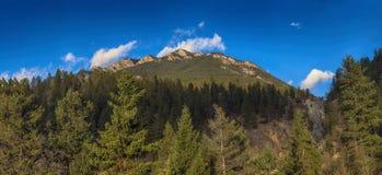 Panoramautsikt av Rocky Mountains från Kootenay medborgaremedeltal fotografering för bildbyråer