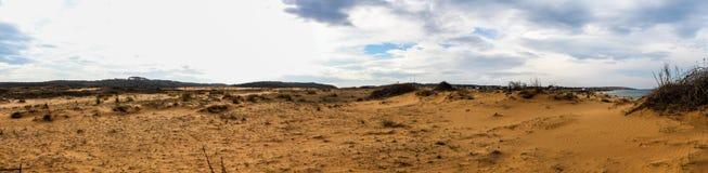 Panoramautsikt av Sandy Field arkivbild