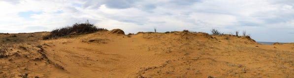 Panoramautsikt av Sandy Field arkivbilder