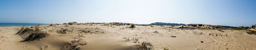 Panoramautsikt av Sandy Field fotografering för bildbyråer
