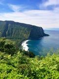 Panoramautsikt av sceniska klippor och havet på den Waipi'o dalen på den stora ön av Hawaii Fotografering för Bildbyråer