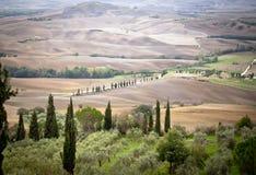 Panoramautsikt av Tuscany på bygd Arkivbild