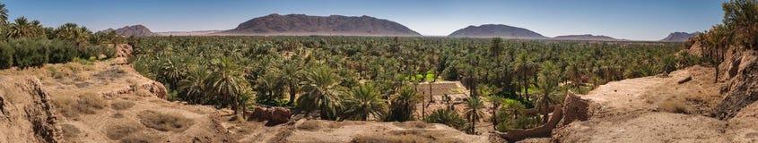 Panoramautsikten över oas av datumet gömma i handflatan, Figuig, Marocko Fotografering för Bildbyråer