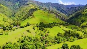 Panoramautsikten av den Cocora dalen och dess vax gömma i handflatan med surret lager videofilmer