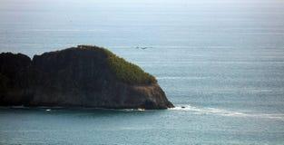Panoramautsikten av den Manuel Antonio nationalparkstranden i Costa Rica, mest härlig stränder i världen, surfare sätter på land  royaltyfri fotografi