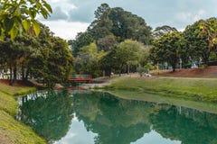 Panoramautsikten av det ekologiskt parkerar, i Indaiatuba, Brasilien arkivbild