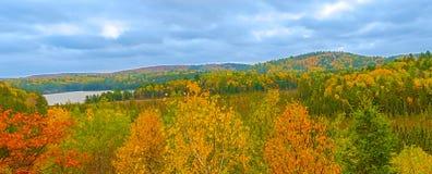 Panoramautsikten på Algonquin parkerar i Ontario, Kanada Arkivfoton