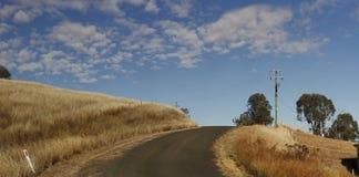 panoramautsikter av den torr gräs- torka slågna lantgården royaltyfri fotografi