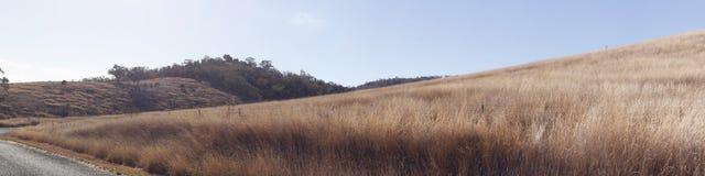 panoramautsikter av den torr gräs- torka slågna lantgården royaltyfria foton