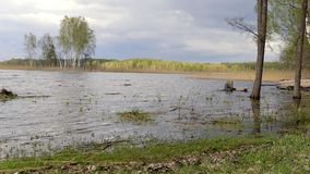 Panoramautsiktkostnad av sjön med träfartyget Braslav _ arkivfilmer
