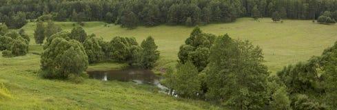 Panoramawaldfluß Lizenzfreie Stockfotos