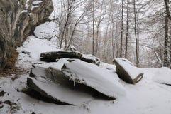 Panoramawintertijd met sneeuw Stock Fotografie