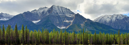 Panoramic alpine scenery along the Icefields Parkway between Jasper and Banff in Canadian Rockies Stock Image