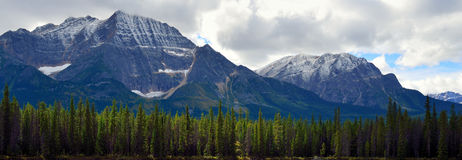 Panoramic alpine scenery along the Icefields Parkway between Jasper and Banff in Canadian Rockies Royalty Free Stock Photography