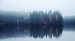 Panoramic autumnal landscape with threes on a coast. Blue toned photo. Panoramic autumnal landscape with threes on a coast, fog and still lake Royalty Free Stock Photo