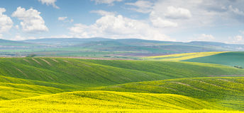 Panoramic background of colorful yellow-green hills with blue sk Royalty Free Stock Photo